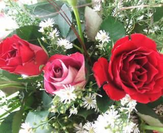Ilustrasi (flowershopsflowers.com)