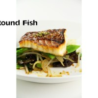 Filleting a Flat or Round Fish