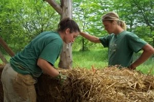 Green Building with Straw Bale