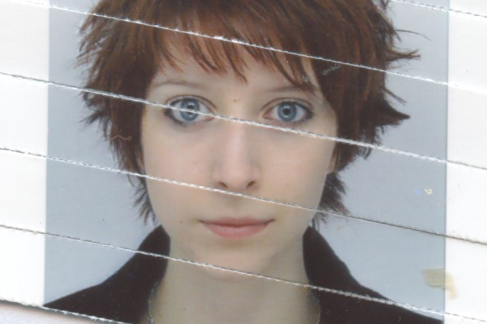 Reconstructed shredded passport photo, May 2013 (originally c. 2010)