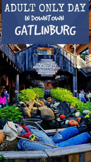 Adult Only Day in Downtown Gatlinburg