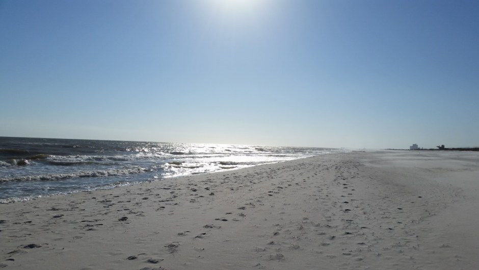 Monthly Recap - Gulf Shores