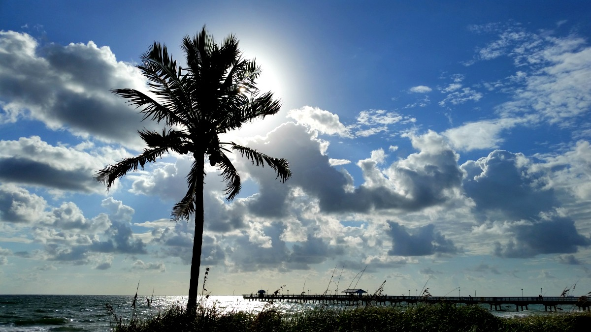 Florida Road Trip: 25 Things You Should Know