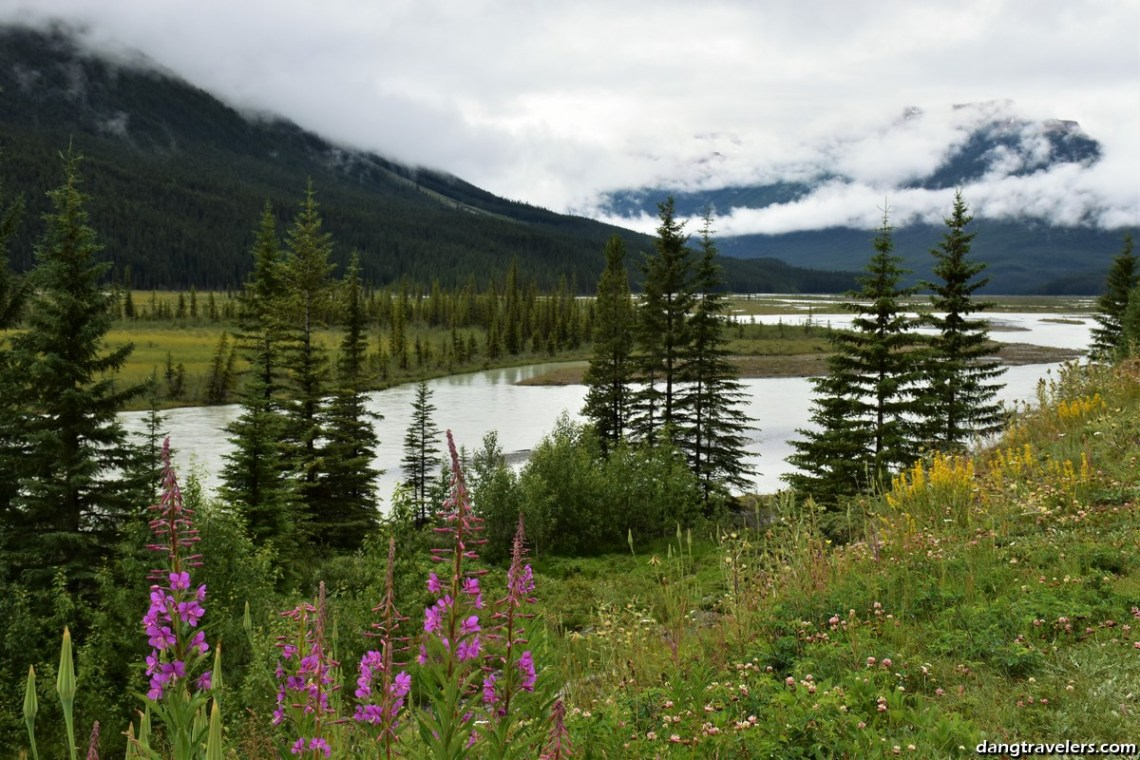 Icefields Parkway (4)