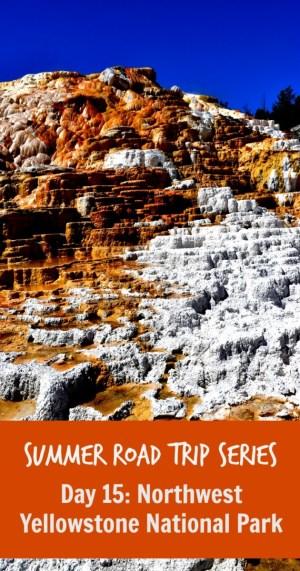 Northwest Yellowstone Pin