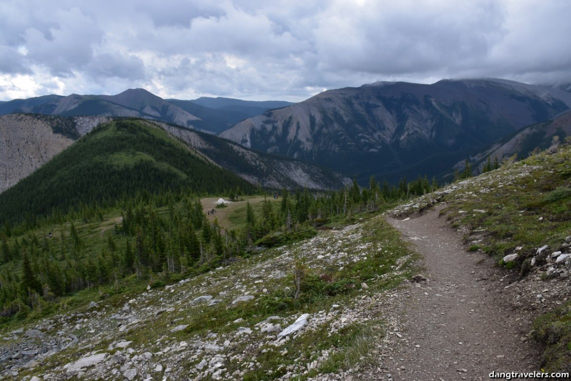 Sulpher Ridgeline Jasper National Park (6) (Copy)