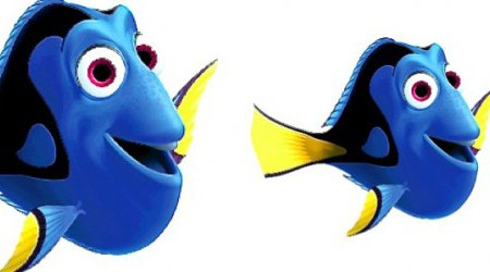 dory-e1426176839534_formaat