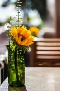 refresh vase