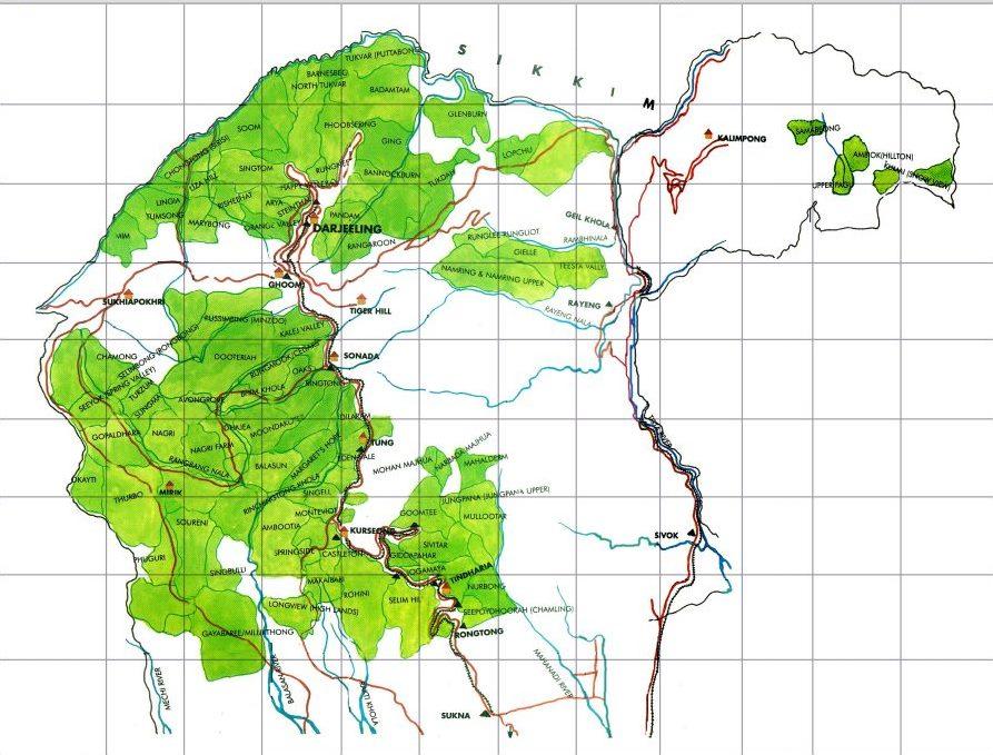 Tea growing areas of darjeeling