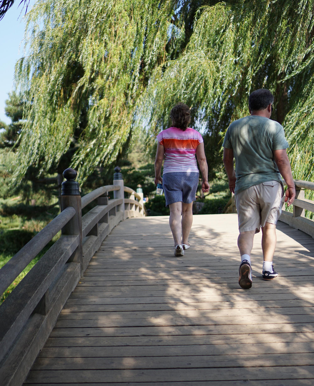 Bridge to Japanese Garden, Chicago Botanic Garden / Darker than Green