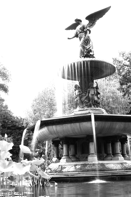 Bethesda Fountain, Central Park, New York City / Darker than Green