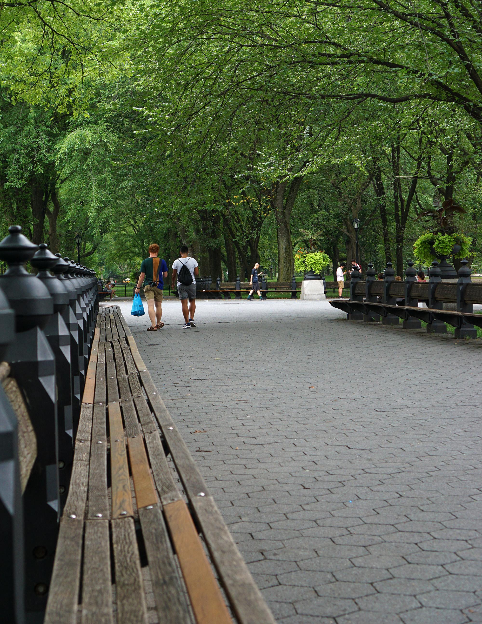 Central Park, New York City / Darker than Green