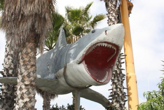 JAWS model