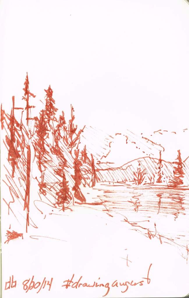 #drawingaugust day20 Spruce Bog Trail, Algonquin Park 9cmx14cm