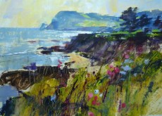 Chris Forsey Getting to the Point, Prawle