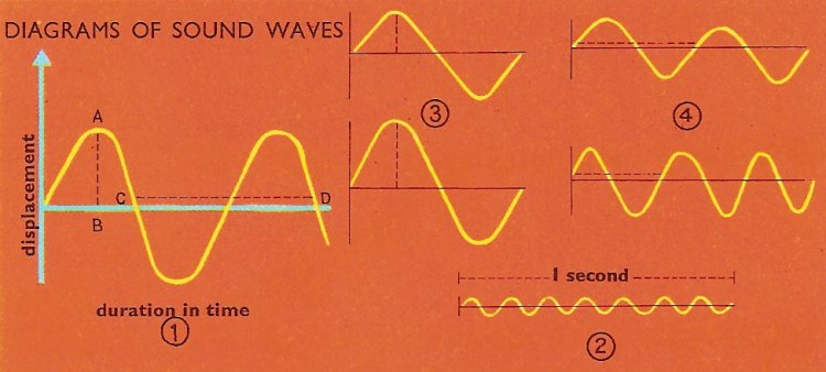 An echo is made by the return of the sound waves to your ear 1