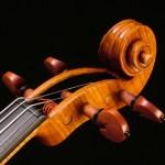 Violin scroll by David Finck