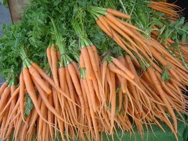 carrotssantamonica.jpg