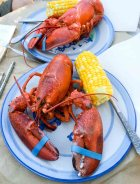 Lobster on Cape Cod