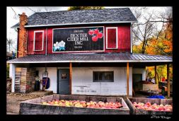 Cider and a dozen donuts from Dexter Cider Mill