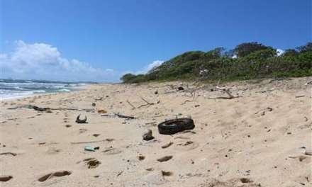 Hawaiian Islands debris:  Stunning Pics Show Debris Everywhere