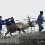 Pizza Delivered By Reindeer in Japan