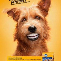 Pedigree-Dentastix-Doggie-dentures