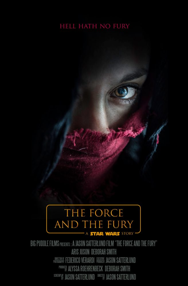 Force and the Fury