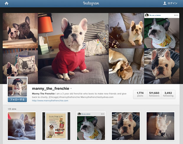 Manny The FrenchieのInstagram