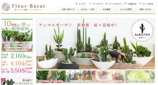 Fleur bazarの観葉植物