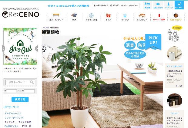 Re:CENOの観葉植物