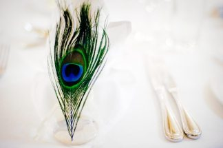Peacock Feather Place Setting || Joey + Justin