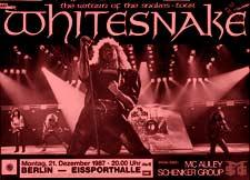 Poster do filme Whitesnake Live!