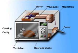 Microwave Use Clean