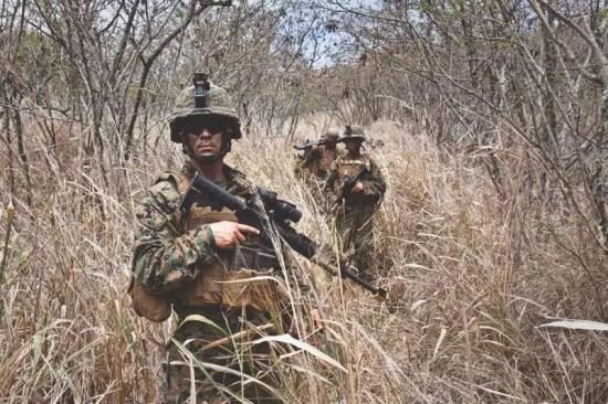 Marine Pattern (MARPAT) Camouflage