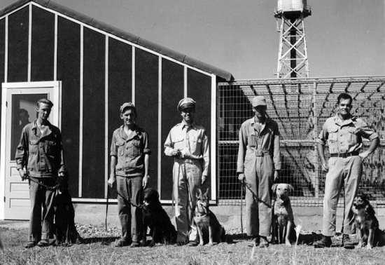 War Dog Reception and Training Center