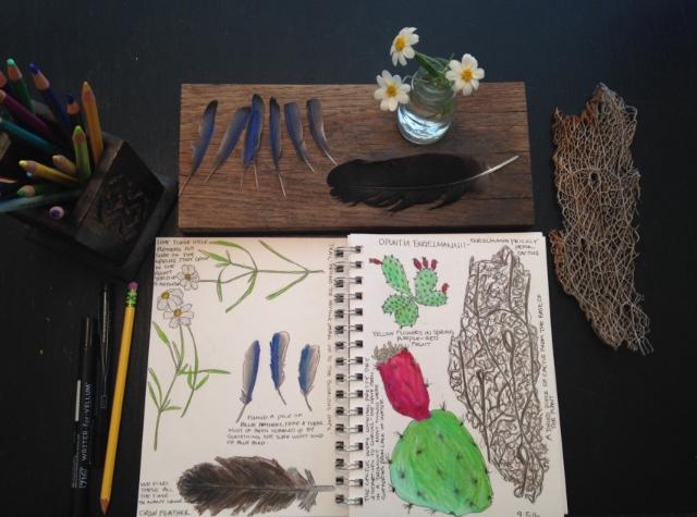 Nature Book ideas for Homeschool