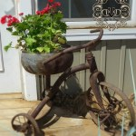 old ticycle with metal bowl attached.