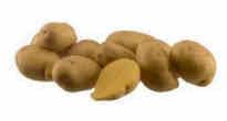 Bayard-distribution-pomme-de-terre-Bayard-andrean-sunside