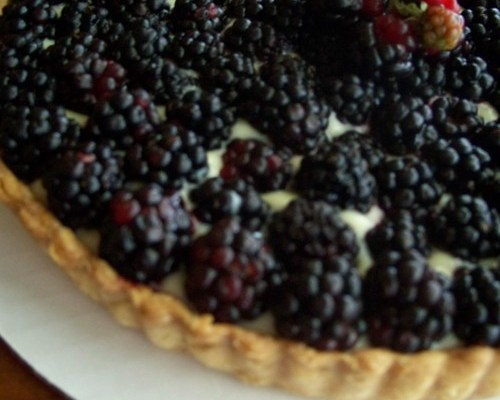 Wild Blackberry Tart