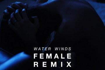 Cosmic Quest - Water Winds (Female Remix)