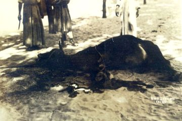 A ritual slaughter in Esna, Egypt in 1926 via Wikipedia.