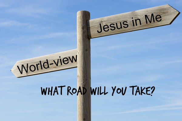 What Road Will You Take