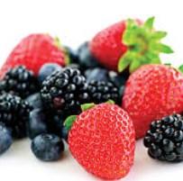 berries brain growth foods
