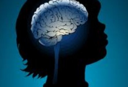 brain growth foods