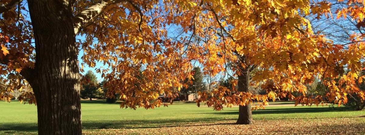 Crestmoor Park Controversy