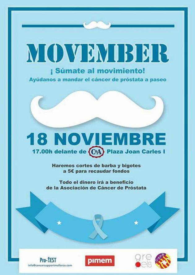 Movember Salon Ideal