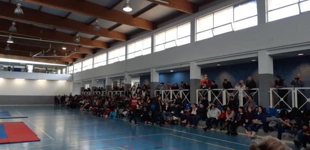 Fedració Balear de Lluita Olimpica