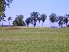 Tacurú