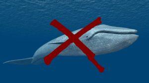 Novo-jogo-está-fazendo-adolescentes-cometerem-suicídio-Blue-Whale-300x168